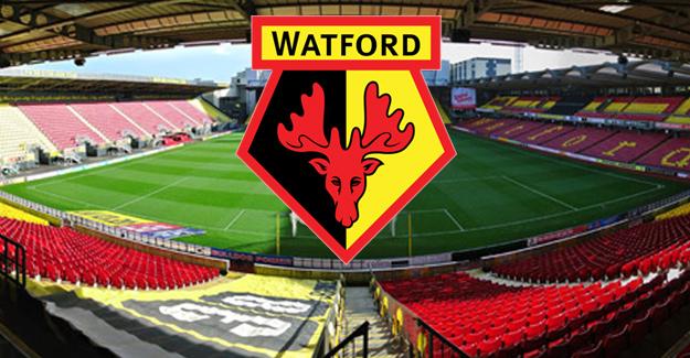 Watford Futbol Kulübü'nün başı sahte belgeyle belada