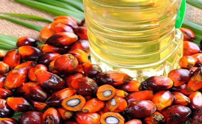 Palm Olein yağının cilde ve saça faydaları nelerdir?