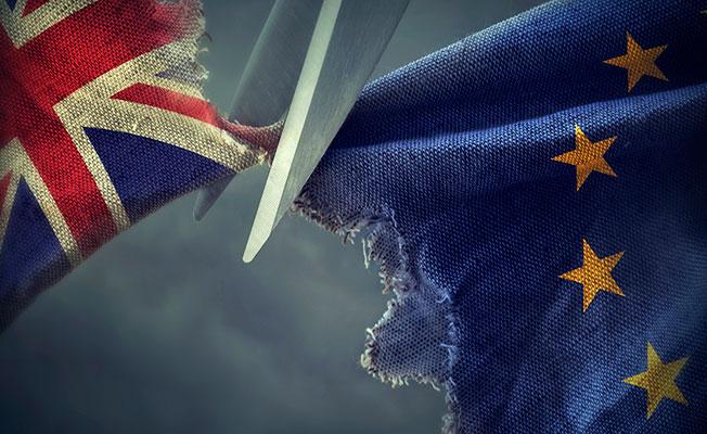 Brexit, ticari yatırımları olumsuz etkiliyor