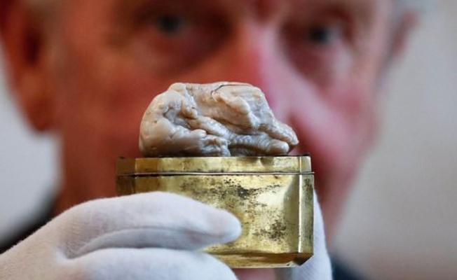 Uyuyan Aslan isimli 'garip şekilli' inci, 320 bin sterline alıcı buldu