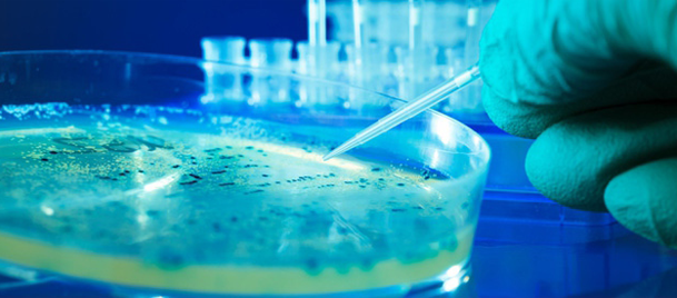 Ebola virüsü 15 dakikada tespit edilecek