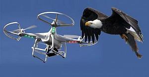 İnsansız hava araçlarına kartal pençesi