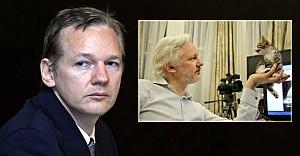 Büyükelçilik mahkumu Assange'e kedi hediye