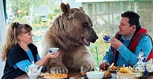 Bu aile aynı evde ayı ile yaşıyor