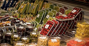 Plastikte kısırlık ve obezite riski
