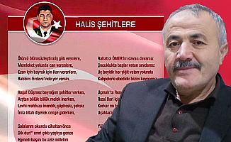 Hemşehrisi akademisyenden, Şehit Halisdemir'e şiir
