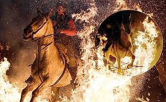 Atlar korkunç alevlerin içinde kaldı