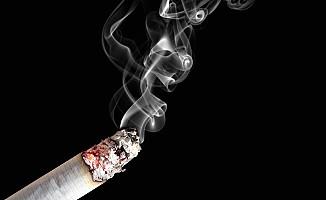 Sigara dumanına alerji riskini artırıyor