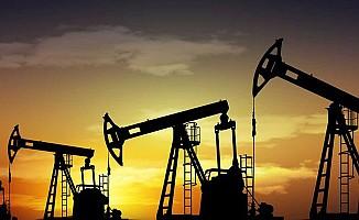 Birleşik Krallık'ın petrol ve doğal gaz rezervi 5,7 milyar varil