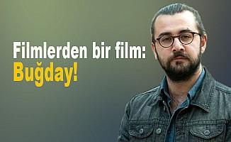 Osman Hulusi Boyraz yazdı