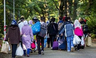 Hollanda'da mültecilere tuvalet temizleme zorunluluğu getirildi