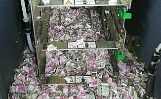 ATM'ye giren fareler 9 milyon TL'yi yedi