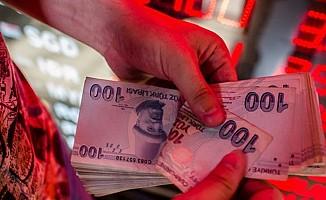 Türk Lirası'ndaki düşüş Japon yatırımcısını da vurdu