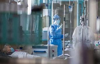 Hollanda'da koronavirüs tedavisi gören 101 yaşındaki kadın iyileşti