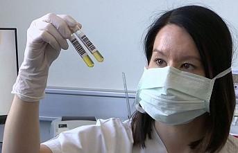 İngiltere'de Kovid-19 hastalarında plazma tedavisi denenecek