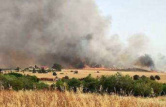 KKTC Alayköy'de Orman Yangını