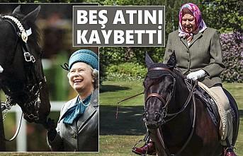 Kraliçe'nin Atlarını Öldüren Hastalık!