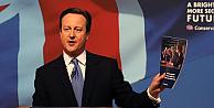 Cameron'un seçim vaadi, AB referandumu