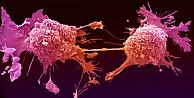 Dünya, kanserde yeni tedavi yöntemine odaklandı!
