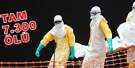 Ebola virüsünün bilançosu açıklandı!