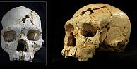İnsanın insana şiddetinin 430 bin yıllık izi bulundu!