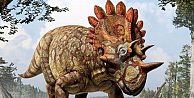 Kanadada 68 milyon yıllık dinozor fosili bulundu