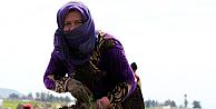 Onlar, günlerinden habersiz Suriyeli Kadınlar