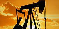 Türkiyenin petrol rezervi bilinenden çok olabilir