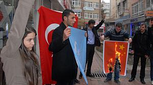 Türkçüler Çin bayrağını yaktı