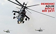 Acıkan pilot, yemek almaya helikopterle gitti