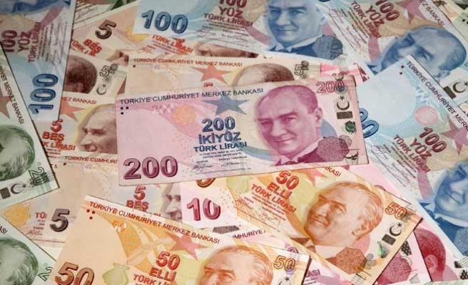 Türk Lirasının yükselişi devam edecek mi?