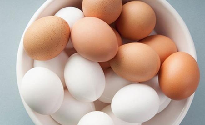 Günde bir yumurtanın faydasını bilseniz!