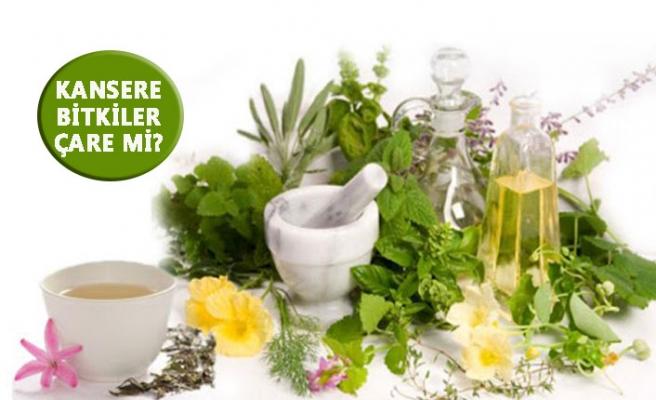 Bitkisel tedaviler kansere faydalı mıdır?