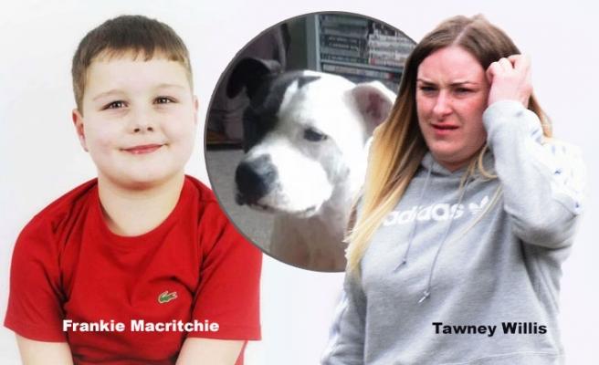 Köpeğin Parçalayarak Öldürdüğü Çocuğun Annesine Hapis Cezası