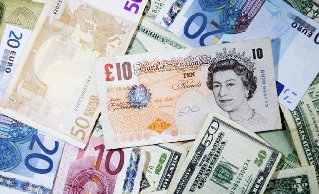 Euro ve Sterlin'in, Türk Lirası Karşısında Rekor Artışı