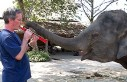 Paul Barton: Gözleri görmeyen yaşlı fillere çalan...