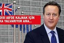 Cameron, Türkiye'ye don biçiyor!