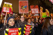 Trump'ın vize yasağına Londra'da gece protestosu