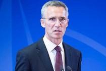 Gözaltılar NATO'yu rahatsız etti!