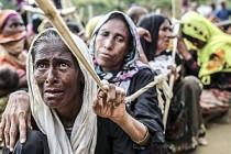 BM, Myanmar'da Arakanlı Müslümanları yalnız bıraktı?