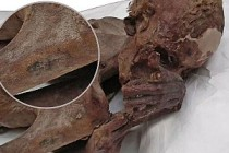 Beş bin yıllık dövmeler Londra'daki mumyalardan çıktı