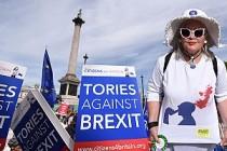 Brexit karşıtları Londra'da meydanlara indi