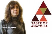 """Cambridge'de """"Anadolu'nun Tadı Film Festivali"""" Düzenlenecek"""