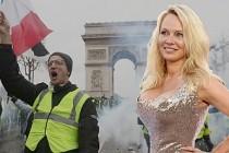 Pamela Anderson'dan 'Sarı Yelekliler'e destek