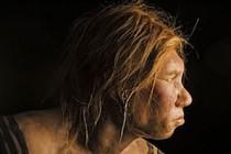 İlk insanların çok yüksek rakımlarda yaşadığına dair izler bulundu