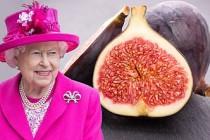 İngiliz Kraliyet ailesinin gözdesi oldu