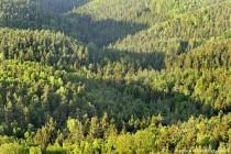 AB, yeşil finansmanı sınıflandırmaya hazırlanıyor