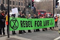 İngiltere'de çevreci aktivistler kendilerini zamkla kaldırıma yapıştırdı