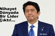 Japonya Başbakanı Abe, Çin liderine Doğu Türkistan'ı sordu!