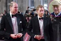 Prens William Ve Harry Aylar Sonra Bir Araya Geldi